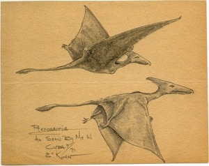 two pterosaurs sketched by eyewitness Eskin Kuhn