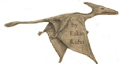 Eskin Kuhn sketched Gitmo Pterosaur he saw