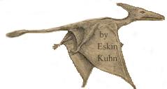 Eskin Kuhn sketched Gitmo Pterosaur he saw
