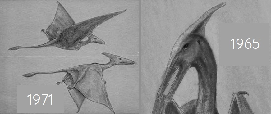 Kuhn-Carson sketches of the living pterosaurs of Cuba