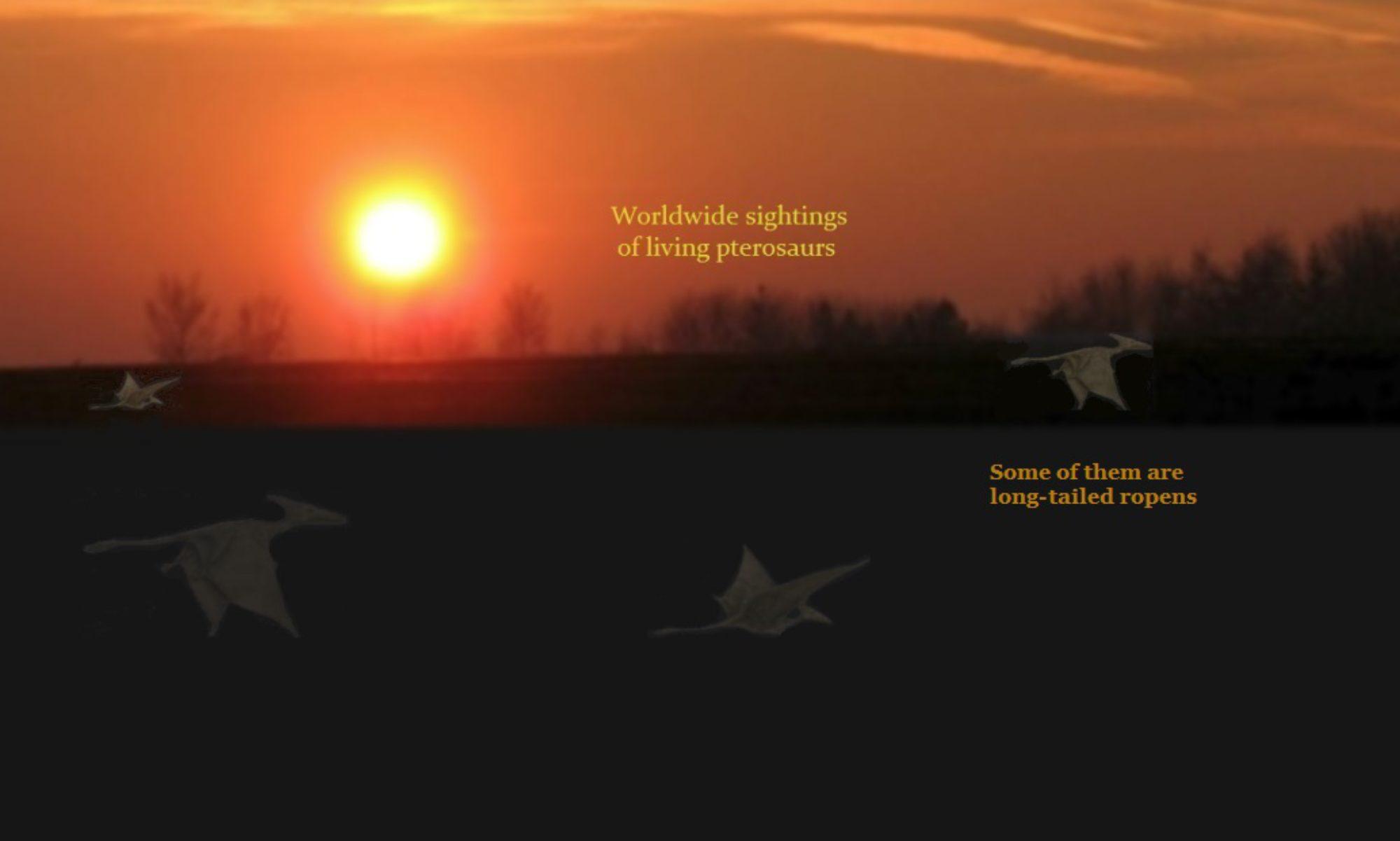 Modern Pterosaur